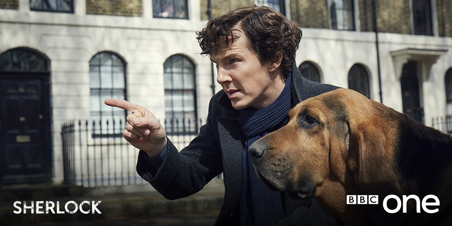 Sherlock has a New Crime-Fighting Partner in First ...